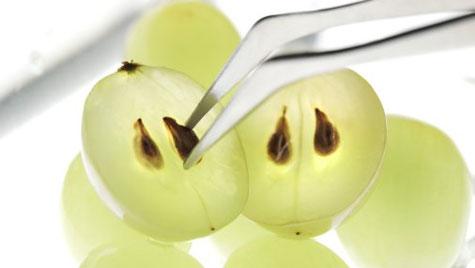 Grape Seeds For Alzheimer's?