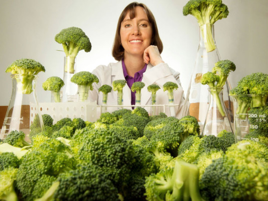 Is Superfood Broccoli the New Sunblock?